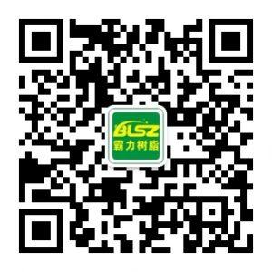 广州霸力树脂防伪查询系统